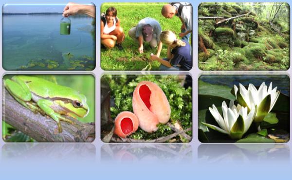 Studiuj Ekspertyzy przyrodnicze